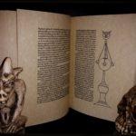 Hipnerotomachia Poliphili, 1499 – Aldo Manuzio – F.Colonna – REPLICA