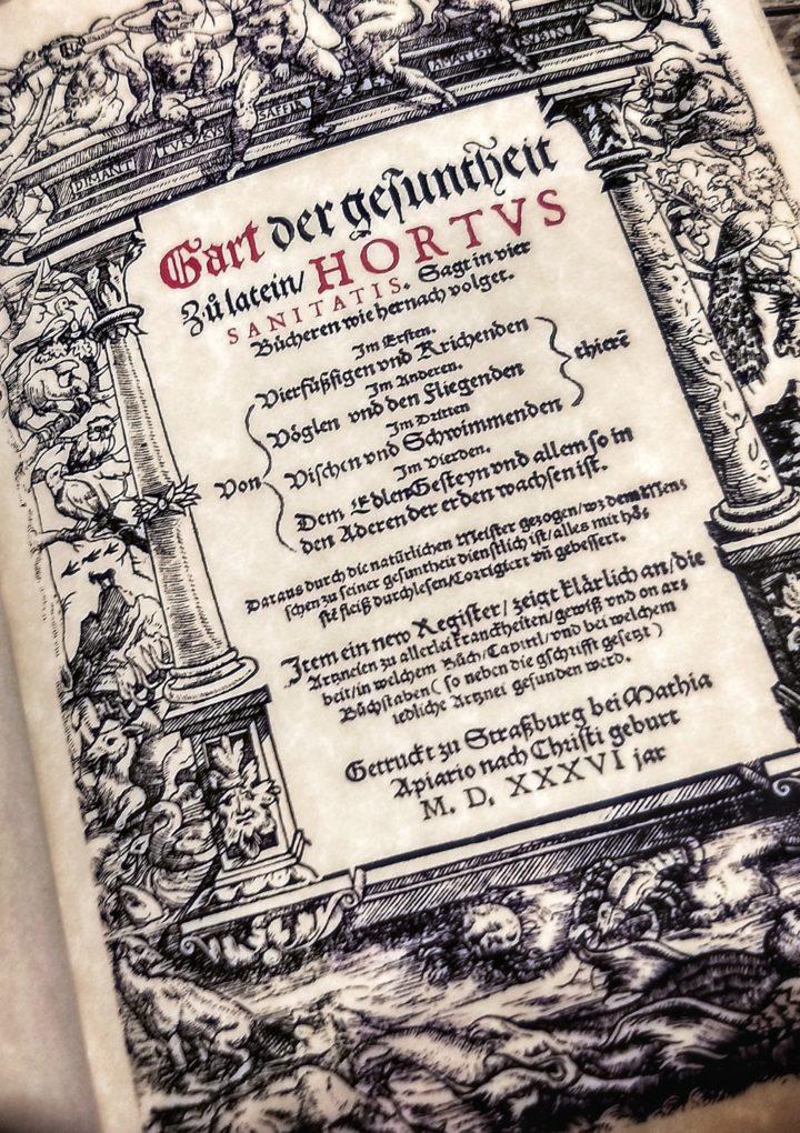 HORTUS Sanitatis – Erbario/Bestiario medievale – REPLICA fatta a mano edizione 1536